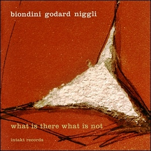 Biondini-Godard-Niggli - What Is There What Is Not