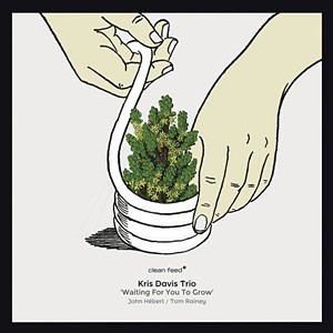 Kris Davis Trio – Waiting for You to Grow